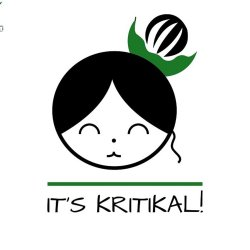 S01E00 Understanding Why It's Kritikal!