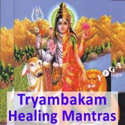 Maha Mrityunjaya Om Tryambakam with Jasmin and Kai