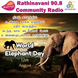 World Elephant Day 2020 | International Annual Event on August 12 | Journalist John & Prasanth Talks | The International Foundation for Crime Prevention and Victim Care (PCVC) PSA