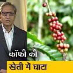 रवीश कुमार का प्राइम टाइम : कॉफी की खेती में बढ़ती मुश्किलें, किसानों को मिल रहे हैं कम दाम