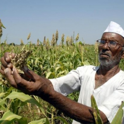 Farm loan waivers and telecom bailouts dominate the headlines this week