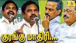 பச்சோந்திகள்... : Edappadi Shoot downs DMK Political Party | Stalin & Durai Murugan