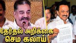 தேர்தல் அறிக்கை காட்டி ஏமாத்துறாங்க : Kamal Funny Speech About AIADMK & DMK | Elections 2019