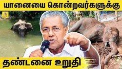 கேரளா முதல்வர் அதிரடி ! | Kerala Elephant Death Issue | Blue Cross