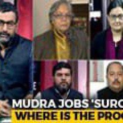 Truth vs Hype Of MUDRA Scheme