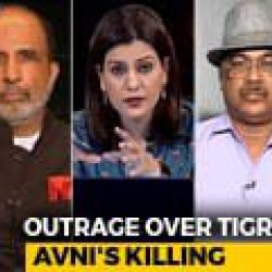 Was The Killing Of Tigress Avni Justified?