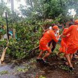 Need Dedicated Committee For Unexpected Calamities: Shiv Sena MP On Cyclone Preparedness