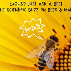 1+2=3? Just Ask A BEE! - The Scientific Buzz On Bees & Math