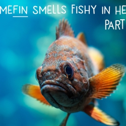 Somefin Smells Fishy In Here! (How Fish Oil Makes Us Smarter) Part 1