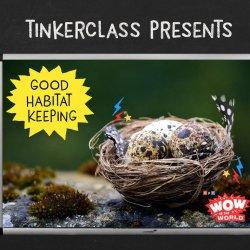 Tinkerclass (Week 3 Day 3): Create & Test