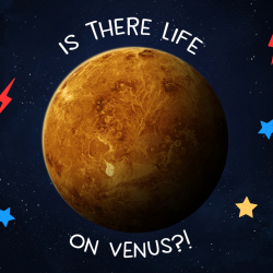 Is There Life on Venus?