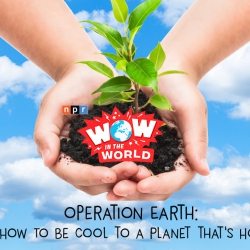 Operation Earth: How To Be Cool To A Planet That's Hot