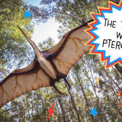 The Trouble With Pterosaur