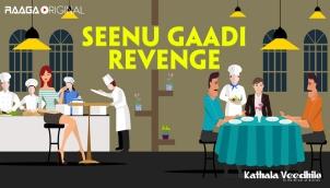 Seenu Gaadi Revenge