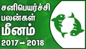 Meenam Rasi (Pisces) Sani Peyarchi Palangal 2017-2018