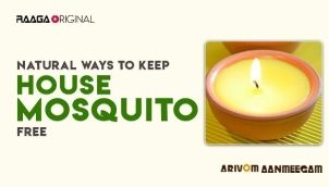 Natural Ways to Keep House Mosquito Free
