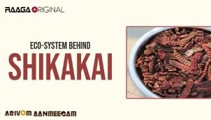 Eco-System Behind Shikakai