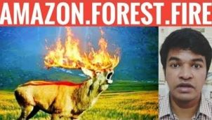 Amazon Forest Fire Explained