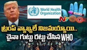 కరోనాని సృష్టించింది చైనా యే ! - WHO Sensational Announcement Over Coronavirus