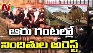 Illegal Hidden Slaughter house inside Poultry Farm shed in Siddipet