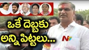 TRS Leader Harish Rao Back to Power with 1.2Lks Majority