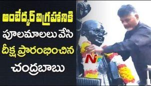 Chandrababu Naidu Garlands Ambedkar Statue | TDP Dharma Porata Deeksha at Delhi