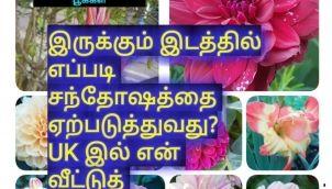 எந்த இடத்தில் இருந்தாலும் அங்கே எப்படி என் சந்தோஷத்தை அதிகரிப்பது என மாற்றி யோசித்தேன்