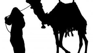 Camel - Kids stories in tamil