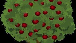 Apple tree - Kids stories in tamil