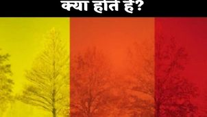Know about Colour Coded Warnings by the Indian Meteorological Department