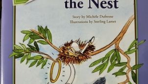 Casey and the Nest