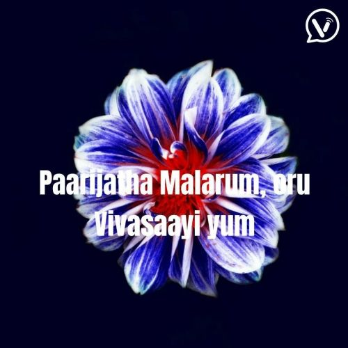 Paarijatha Flower