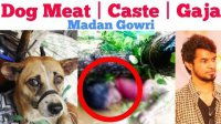 Chennai Dog Meat | Gaja Cyclone | Caste | Tamil | Madan Gowri | MG